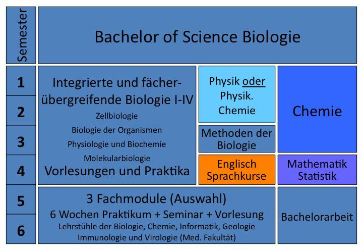 Biologie Bachelor