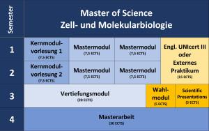 Übersichtsplan über den Aufbau des Masterstudiums Zell- und Molekularbiologie