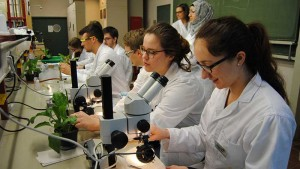 Studenten in einem biologischen Labor