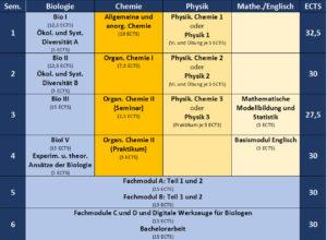 Übersichtsplan über den Aufbau des Bachelorstudiums Biologie mit Studiumsbeginn Winter 2016